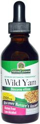 Wild Yam Liquid Extract 2 fl oz (60 mL)